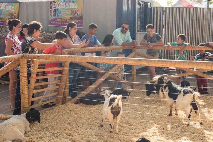Neste ano, todas as exposições do ICA estarão concentradas na Mini Fazenda da UFMG.