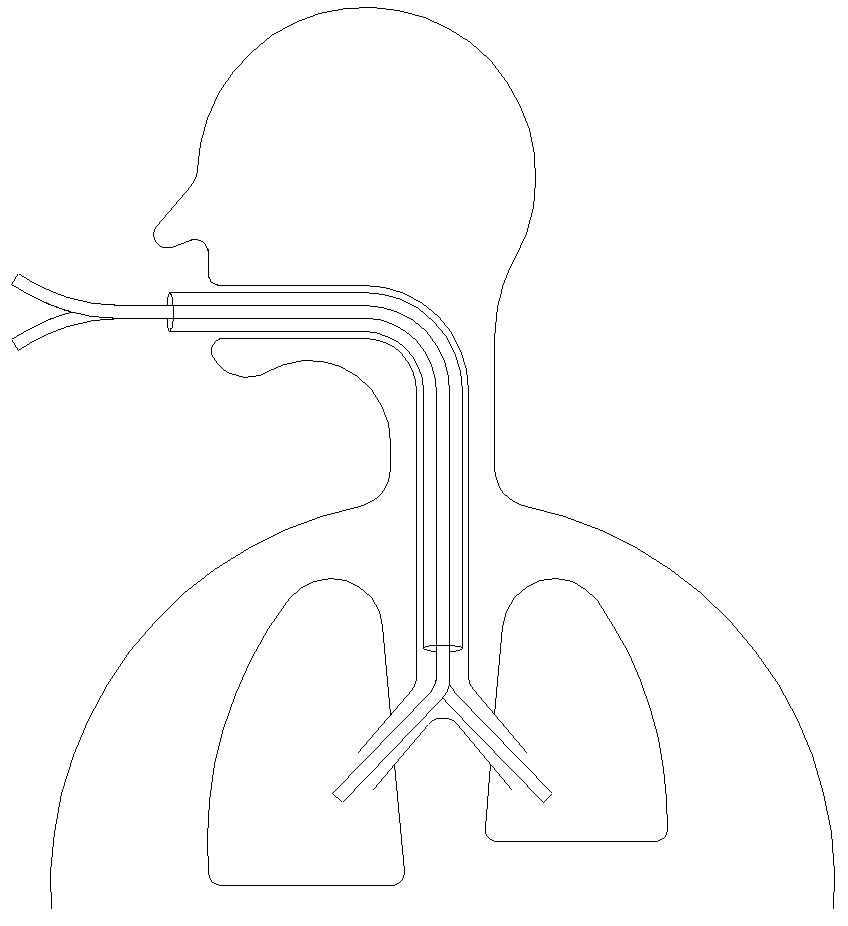 Desenho esquemático da sonda em formato 'V'