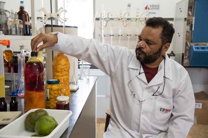 De acordo com o técnico do Laboratório de Óleos do ICA, Teddy Marques, os óleos do cerrado são valorizados pela indústria de alimentos, de cosméticos e de biocombustíveis.