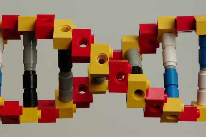 As representações devem ser da forma mais criativa possível, como a montagem em lego do DNA, ilustrada na foto.