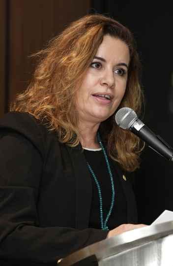 Sandra Goulart: trajetória tematicamente diversificada
