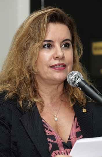 Sandra Goulart Almeida: projeto de Estado