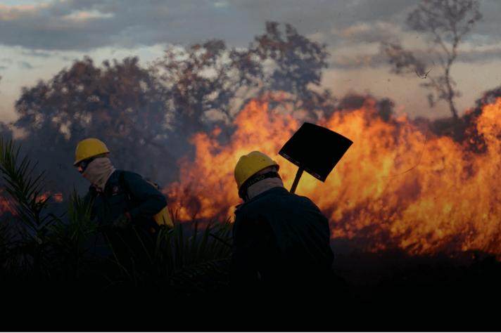 Brigadas se mostraram efetivas na prevenção e redução de incêndios em UCs e áreas privadas