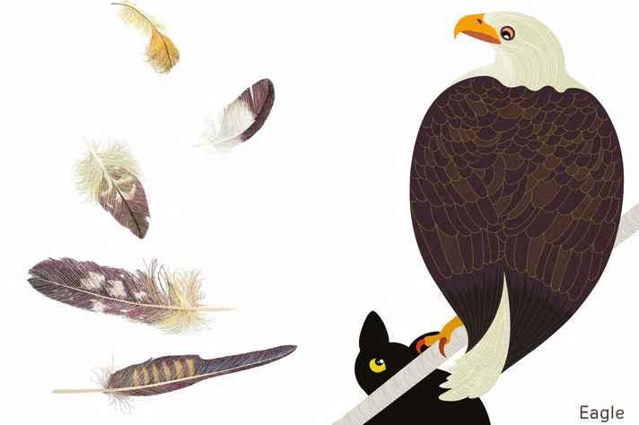 Página de Plume: presença do gato estimula a imaginação