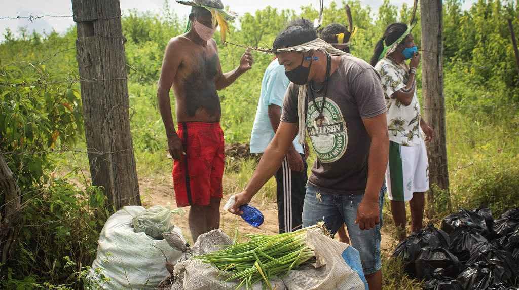 Pandemia intensificou vulnerabilidade de povos indígenas no Brasil