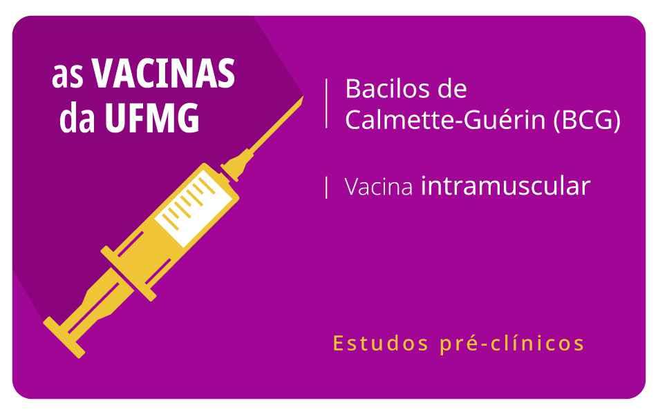 <p>Desenvolvida no ICB, vacina usa os bacilos da tuberculose como vetor</p>